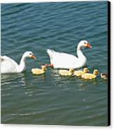 Family Outing On The Lake Canvas Print by Ed Churchill