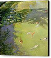 Featherplay Canvas Print by Timothy Easton