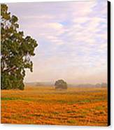 Field Of Gold Canvas Print by Paul Riemer