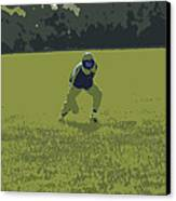 Fielding 2 Canvas Print by Peter  McIntosh