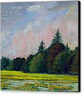 Fields Mid-storm Canvas Print by Bob Northway