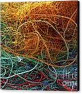Fishing Nets Canvas Print by Carlos Caetano