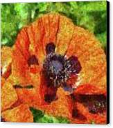 Flower - Poppy - Orange Poppies  Canvas Print by Mike Savad