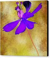 Flower Take Flight Canvas Print by Judi Bagwell