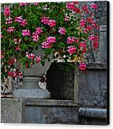 Flowers On The Steps Canvas Print by Mary Machare