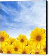 Flowers Over Sky Canvas Print by Carlos Caetano