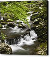Flowing Mountain Stream Canvas Print by Andrew Soundarajan