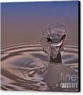 Fluid Flower Canvas Print by Susan Candelario