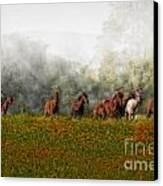Foggy Morning Canvas Print by Susan Candelario