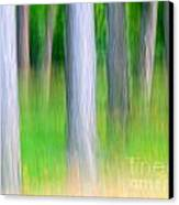 Forest Abstract Canvas Print by Odon Czintos