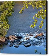 Framed Rapids Canvas Print by Robert Bales