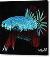 Frilled Blue Moonstone Canvas Print by Kayleigh Semeniuk