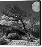 Full Moon Over Jekyll Canvas Print by Debra and Dave Vanderlaan