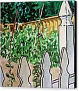 Garden Fence Sketchbook Project Down My Street Canvas Print by Irina Sztukowski