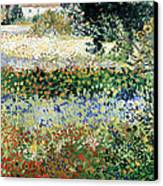 Garden In Bloom Canvas Print by Vincent Van Gogh