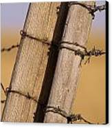 Gate Posts Join A Barbed Wire Fence Canvas Print by Gordon Wiltsie
