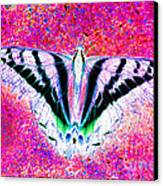 Ghost Butterfly Canvas Print by Nick Gustafson