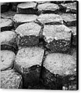 Giants Causeway Stones Northern Ireland Canvas Print by Joe Fox