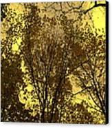 Glisten Canvas Print by Ed Smith