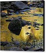 Golden Fall Reflection Canvas Print by Heather Kirk