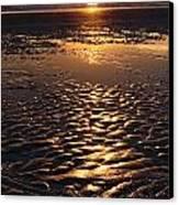 Golden Sunset On The Sand Beach Canvas Print by Setsiri Silapasuwanchai