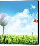 Golf Ball With Tee In The Grass  Canvas Print by Sandra Cunningham