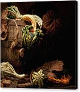 Gourds And Leaves Still Life Canvas Print by Tom Mc Nemar