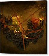 Grapes Canvas Print by Peter Labrosse