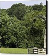 Grave Of Lafayette Meeks Appomattox Virginia Canvas Print by Teresa Mucha