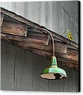 Green Light Canvas Print by Brenda Bryant