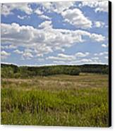 Griggstown Native Grassland Preserve Canvas Print by David Letts