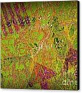 Grunge Background 4 Canvas Print by Carlos Caetano