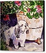 Guarding Geranium Sketchbook Project Down My Street Canvas Print by Irina Sztukowski