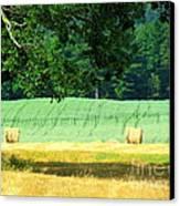 Hay Landscape Canvas Print by France Laliberte