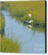 Heron Reflections Canvas Print by Cindy Lee Longhini