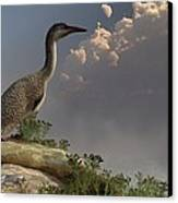 Hesperornis By The Sea Canvas Print by Daniel Eskridge