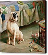 Hide And Seek Canvas Print by Arthur Charles Dodd