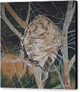 Hornet's Nest Canvas Print by Terry Forrest
