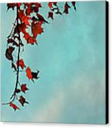 Hot And Cold Canvas Print by Aimelle