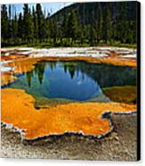 Hot Springs Yellowstone Canvas Print by Garry Gay