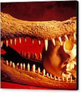 Human Skull  Alligator Skull Canvas Print by Garry Gay