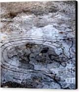 Ice Figures Canvas Print by Pauli Hyvonen