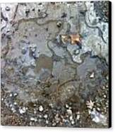 Ice On The Rocks Canvas Print by Elijah Brook