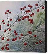 Iced Holly Canvas Print by Patsy Sharpe
