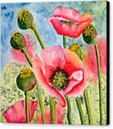 Iceland Beauties Canvas Print by Kimberlee Weisker