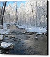 Icing On The Trees Canvas Print by Sandy Tracey