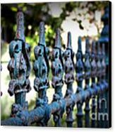 Iron Fence Canvas Print by Perry Webster