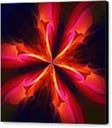 Kaliedoscope Flower 121011 Canvas Print by David Lane