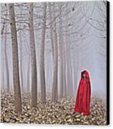Lady In Red - 7 Canvas Print by Okan YILMAZ