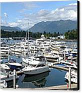 Large Marina In Vancouver Bc Canada. Canvas Print by Gino Rigucci